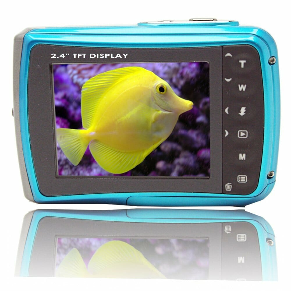 18mp blue wp6800